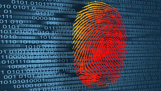 data fingerprint forensics