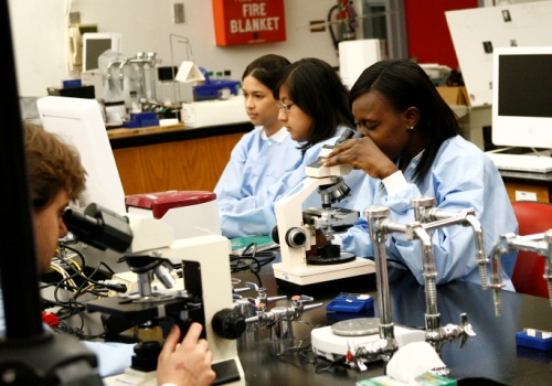 Students conduct research in a science lab