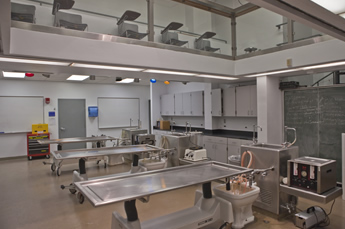 Embalming room design related keywords embalming room Embalming room design